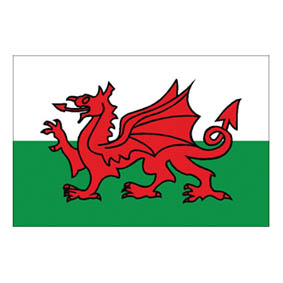Waveline Wales Courtesy Flag 45x30cm Printed-0